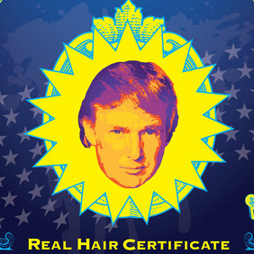 Donald Trump Hair Vector - бесплатный vector #215955