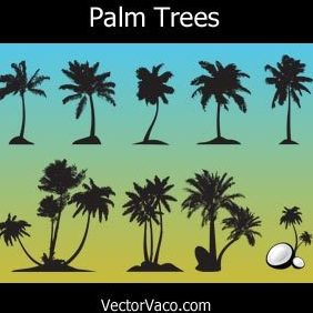 Palm Trees - Free vector #220985