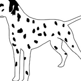 Dalmatian Dog - Free vector #222685