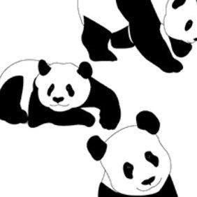 Panda Bears - vector gratuit #222885