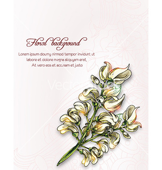Free floral background vector - Free vector #230465