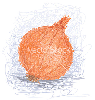 Free closeup of a fresh orange onion bulb vector - Free vector #233375