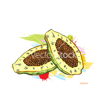 Free papaya with colorful splashes vector - бесплатный vector #243265