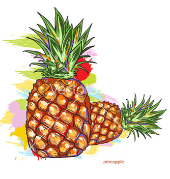 Free pineapple with colorful splashes vector - vector gratuit #243315