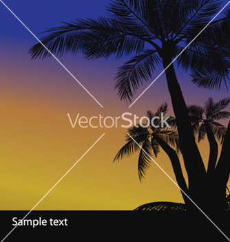 Free summer background with palm trees vector - Free vector #243935