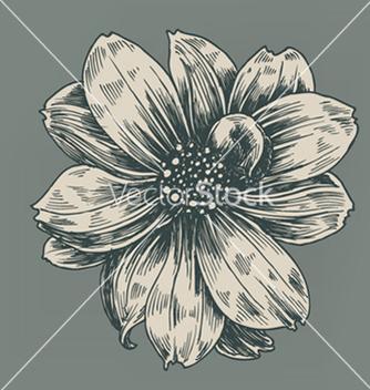 Free vintage flower vector - Free vector #263365