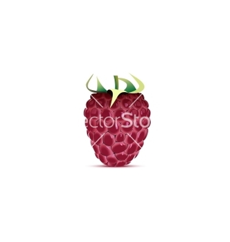 Free raspberry vector - vector gratuit #266745