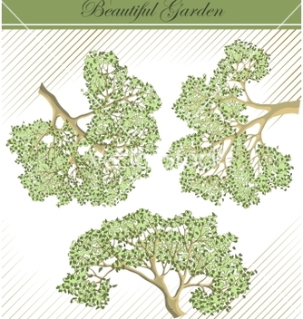 Free detailed branches of trees vector - vector #266785 gratis