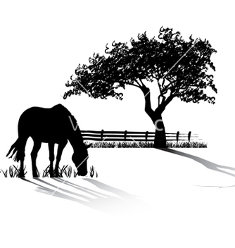 Free horse grazing vector - Free vector #269965