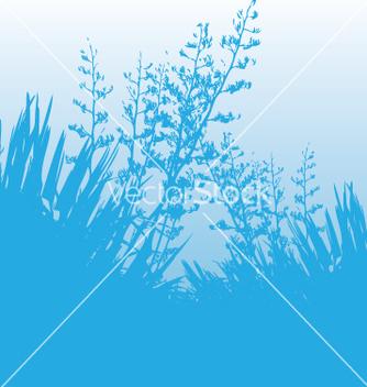 Free blue flax vector - Kostenloses vector #270645