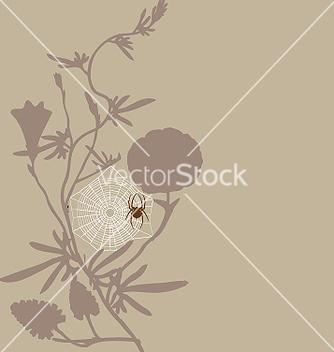 Free spider vector - Kostenloses vector #271045