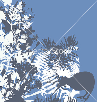 Free kiwi in bush vector - vector gratuit #271205
