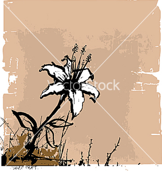 Free flower wall vector - Free vector #271355
