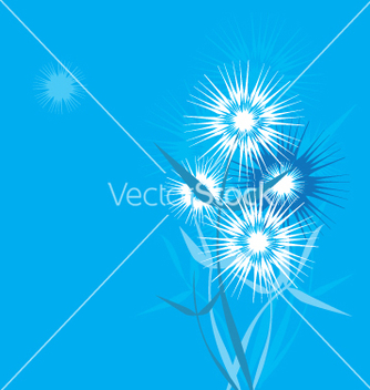 Free dandelion stylized vector - Free vector #271445