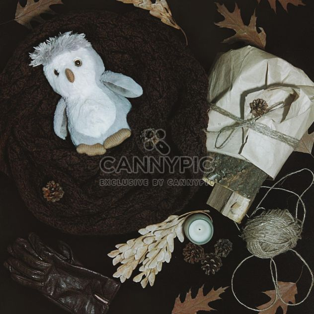 Warm scarf, gloves and dry leaves - Free image #272225