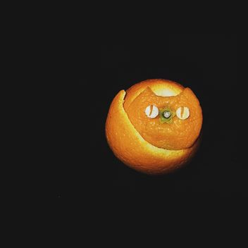 cat made of tangerine peel on a black background - бесплатный image #272255