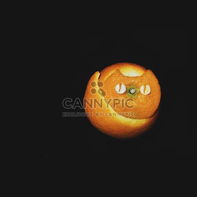 cat made of tangerine peel on a black background - Free image #272255