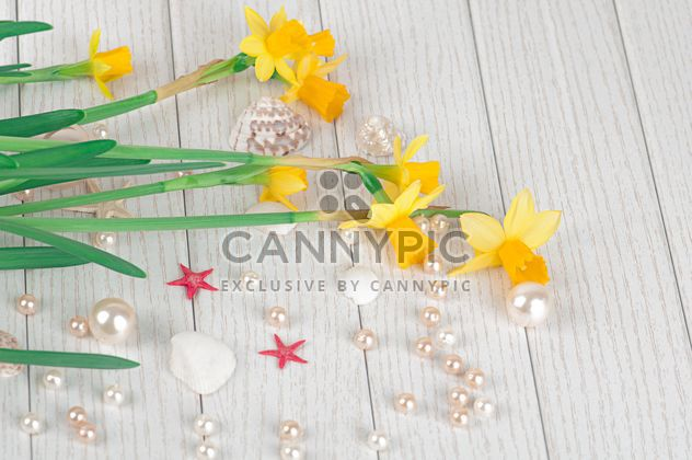Daffodils on white wooden background - Free image #272575