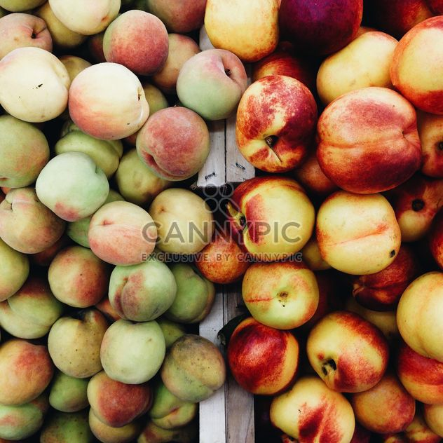 #fruit #summer - image gratuit #273765