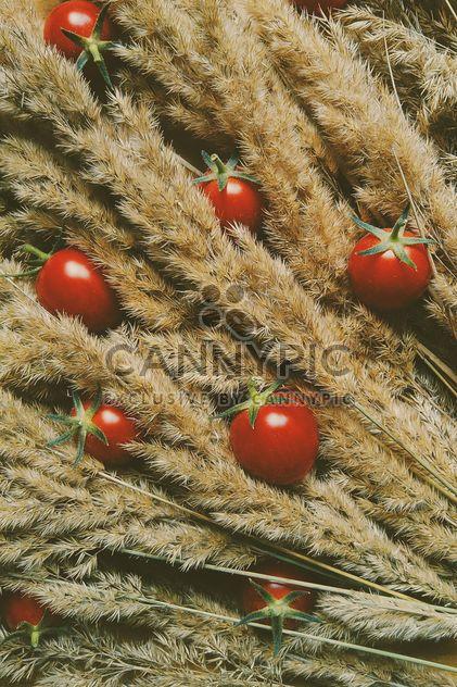 Tomates en seco spicas - image #274855 gratis