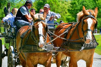 carriage drawn by two horses - image gratuit #274925