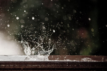 Rain in Summer - image #278625 gratis