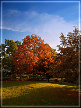 Herbst/Autumn in Hamburg - Free image #279015