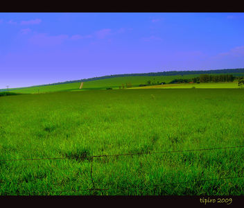 Green Pastures - Free image #279585