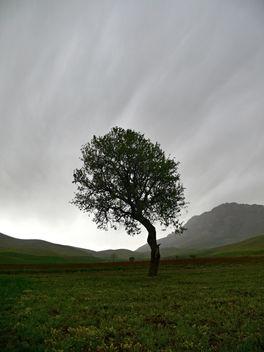 Grey(t) day at Farasfaj - Free image #279965