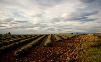 Sous un ciel moutonneux - Free image #280635