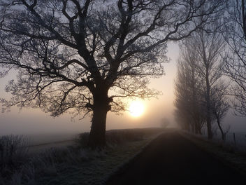 Sunrise - image #280775 gratis