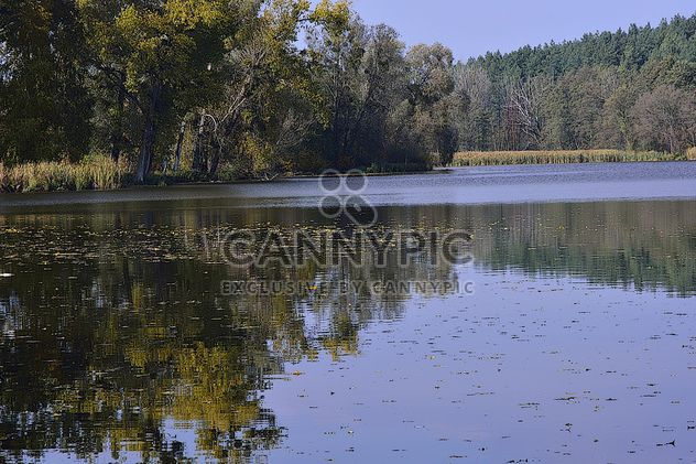 Autumn lake - Free image #280935