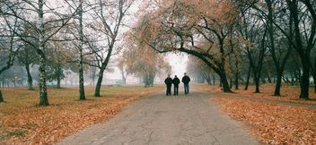 Three boys in park - Free image #280945