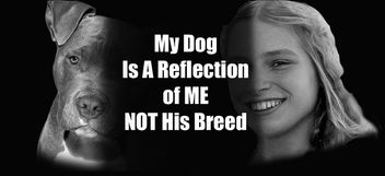 Dog and Owner, Anti BSL - Free image #281765