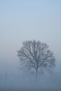 Alone - Kostenloses image #284695