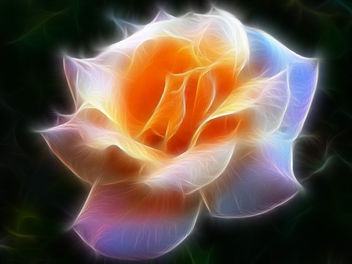 Fantasy Rose Fractalius - image gratuit #285455