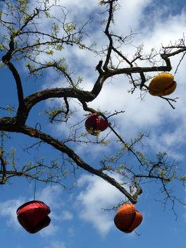 Strange Fruit - Kostenloses image #285795