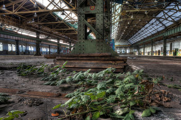 Abandoned Railroad Engineering Works (6) - image gratuit #291215