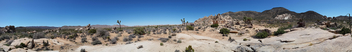Joshua Tree panorama - бесплатный image #291535