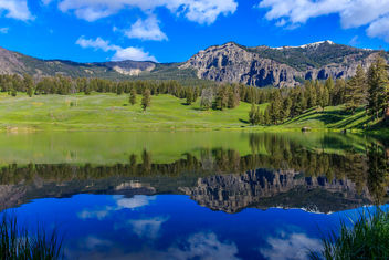 Trout Lake, Yellowstone National Park, USA - Kostenloses image #294165