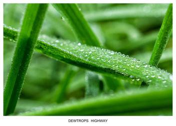 DEWTROPS HIGHWAY - бесплатный image #294425