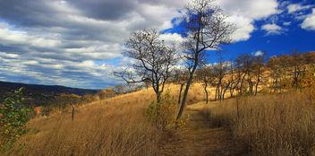Prairie Grass Trail (4) - Kostenloses image #294525