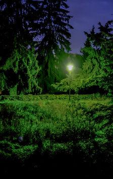 Light - image #294555 gratis