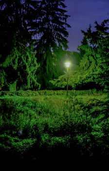 Light - бесплатный image #294555
