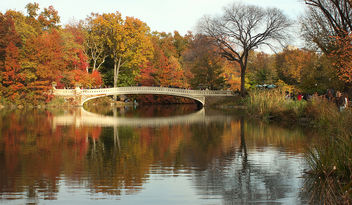 Fall in Central Park - image #294735 gratis
