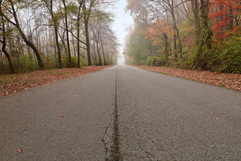 Misty Fall Road - HDR - Free image #295215