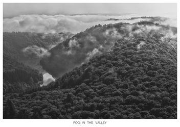 FOG IN THE VALLEY - Free image #295435