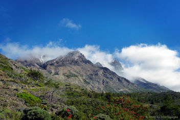 Torres del Paine - image gratuit #296465