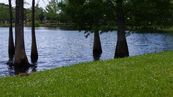 Crest Lake Park - Free image #297145