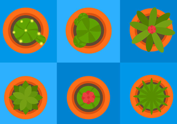 Plant Top View - vector #297785 gratis
